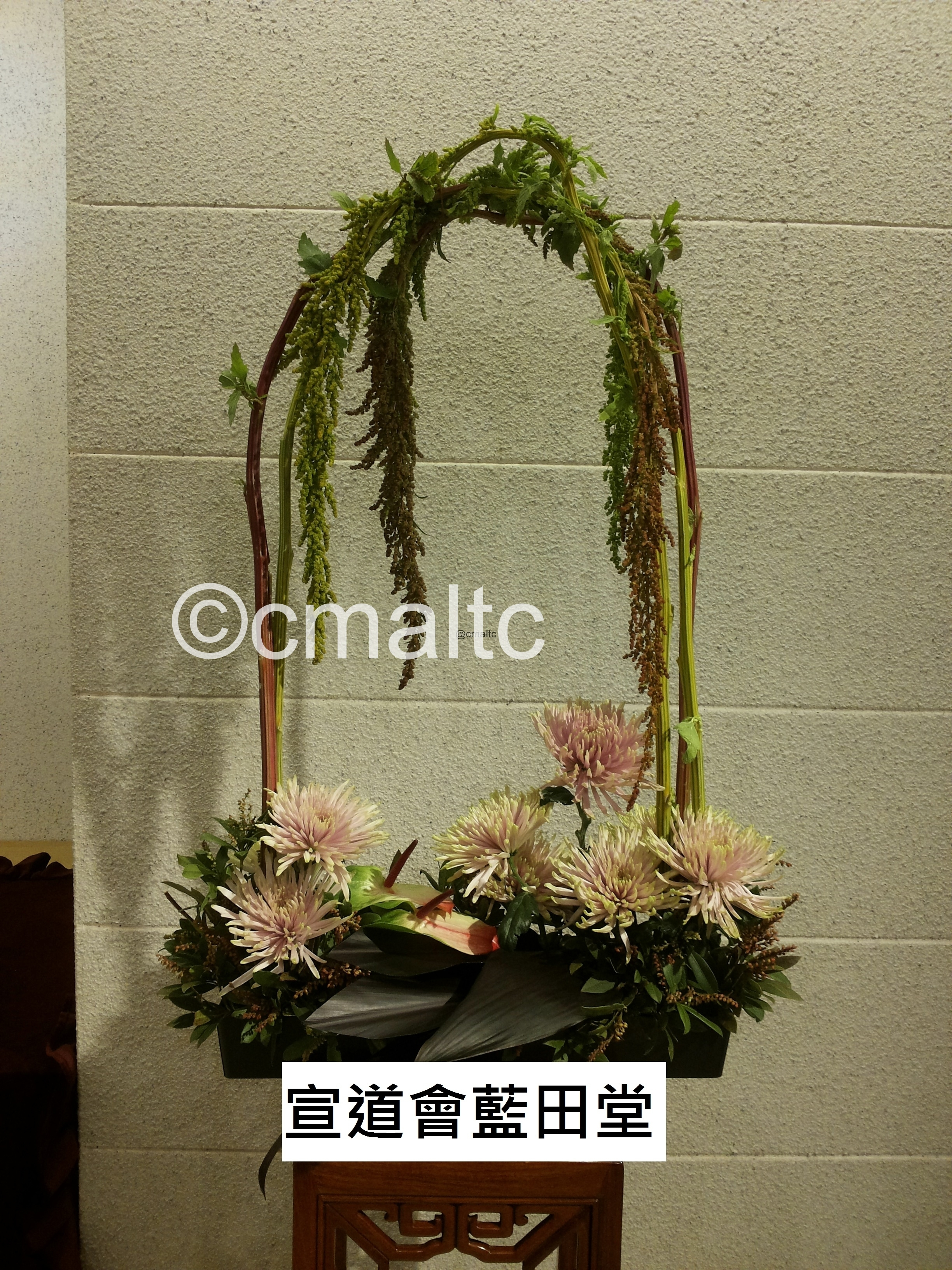 flower20160117