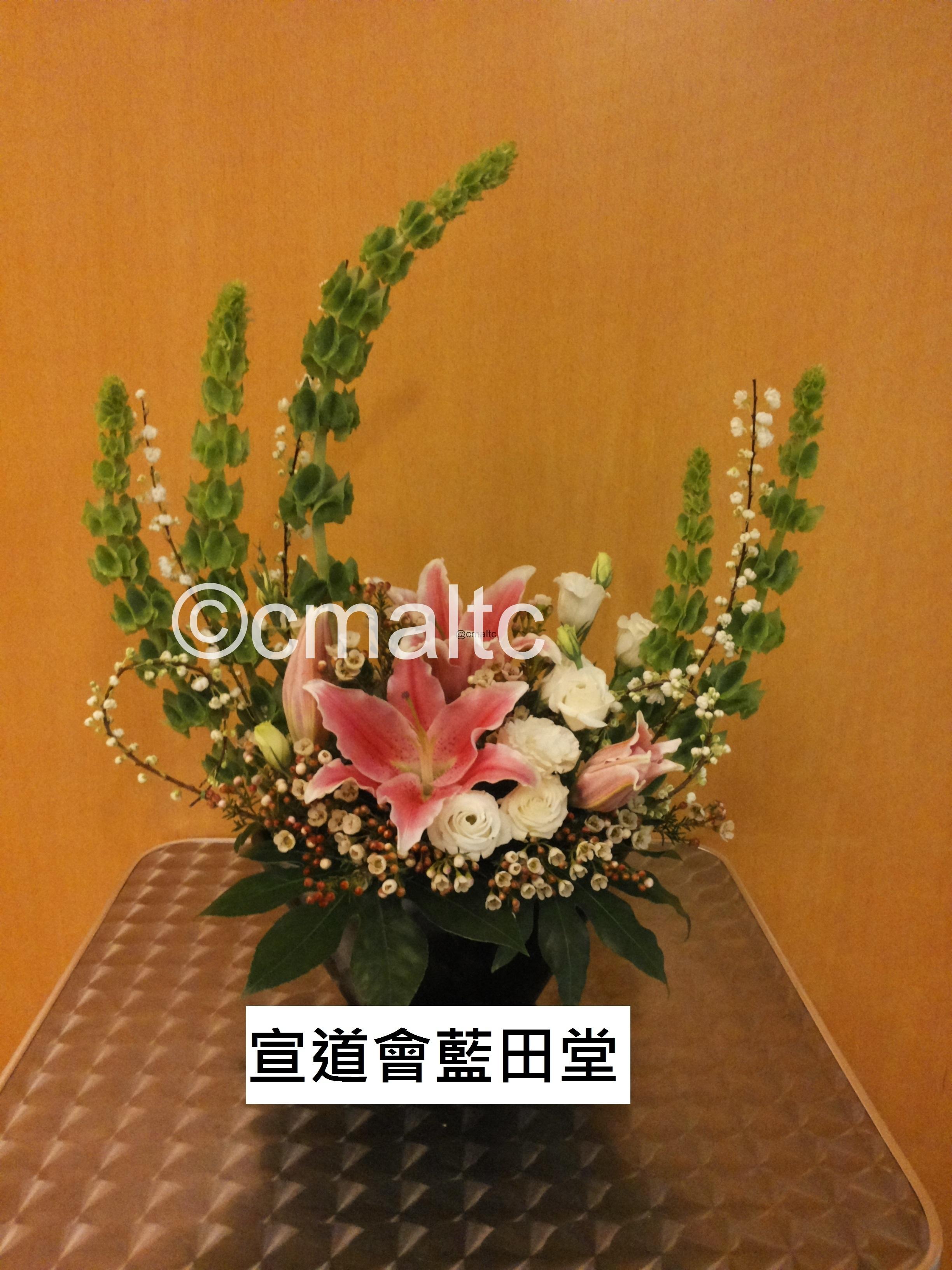 flower20160131