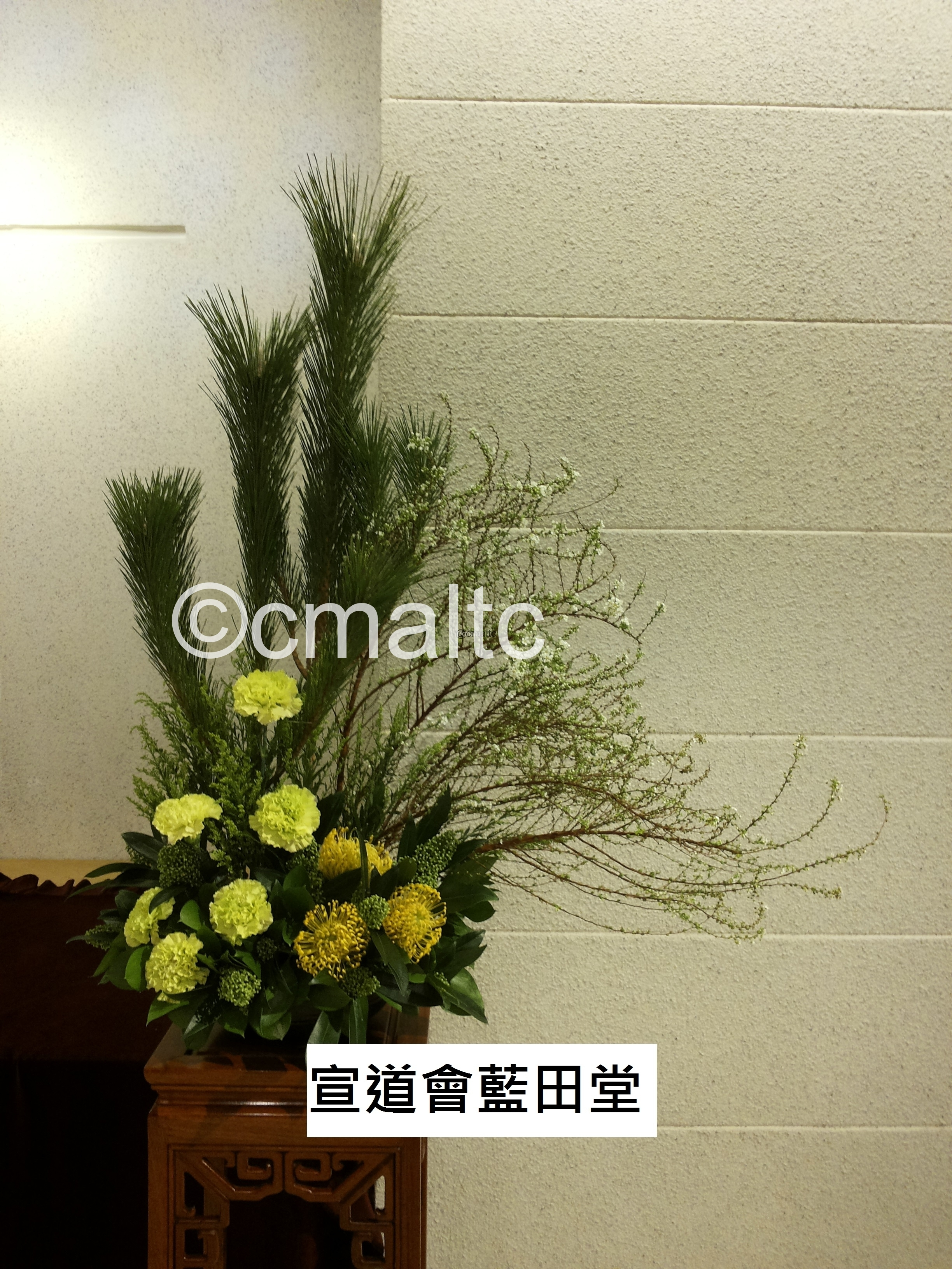 flower20160207