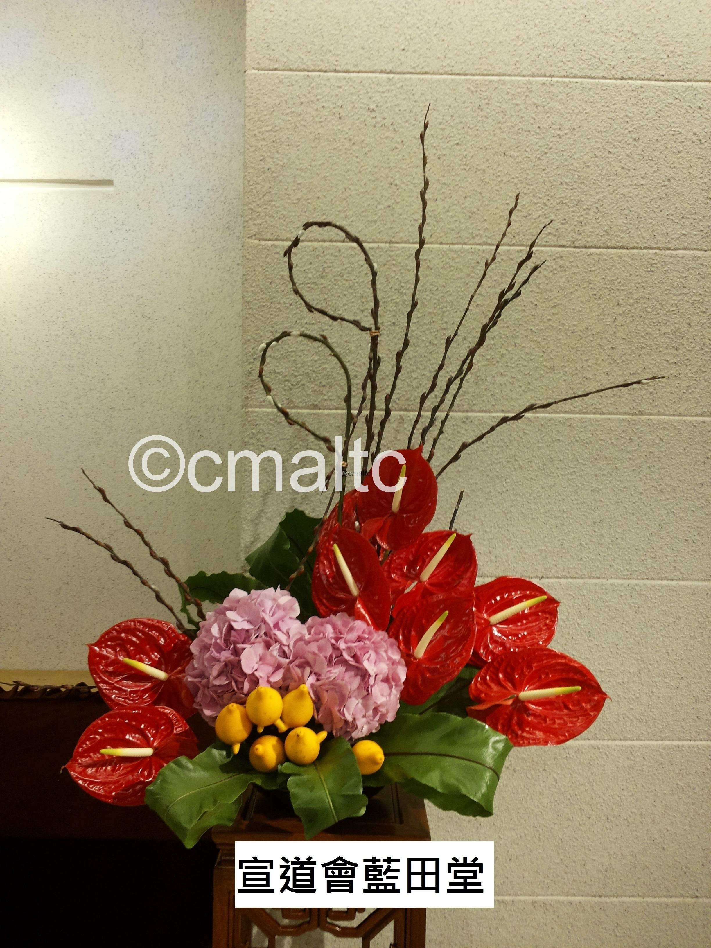 flower20160214