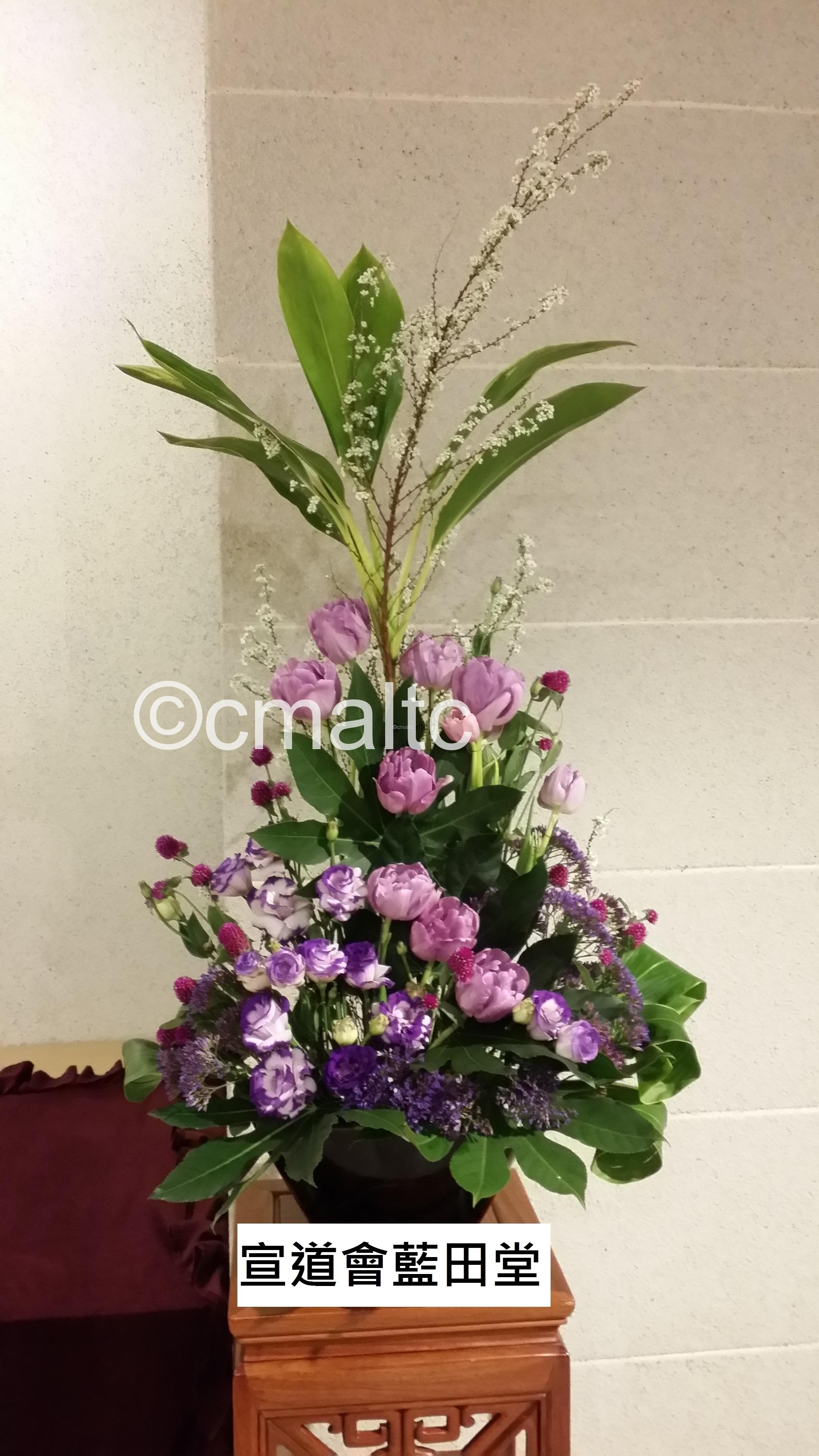flower20160306