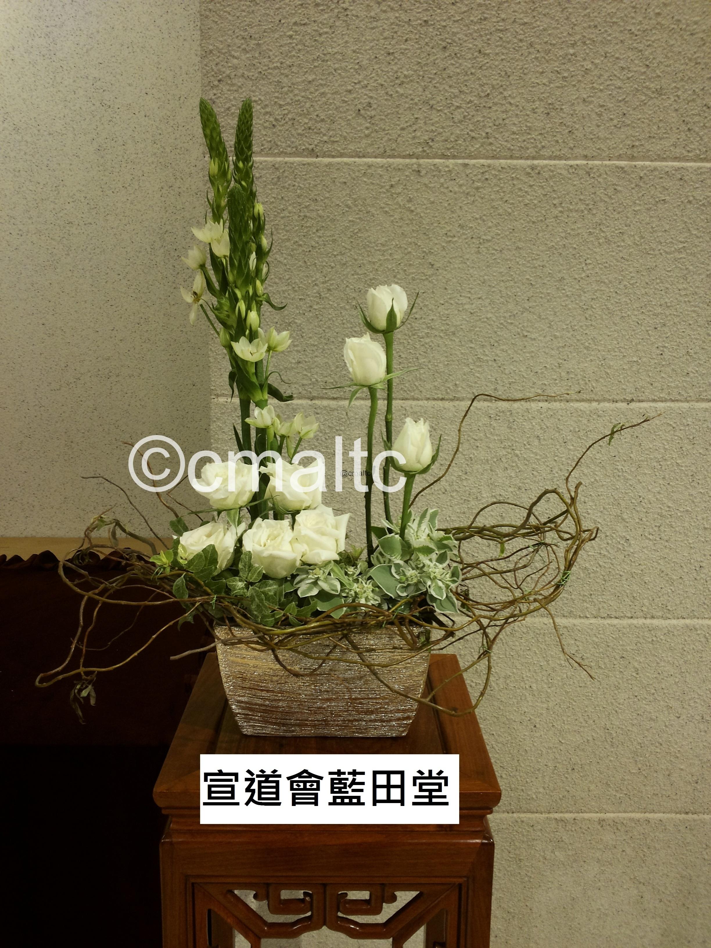 flower20160403