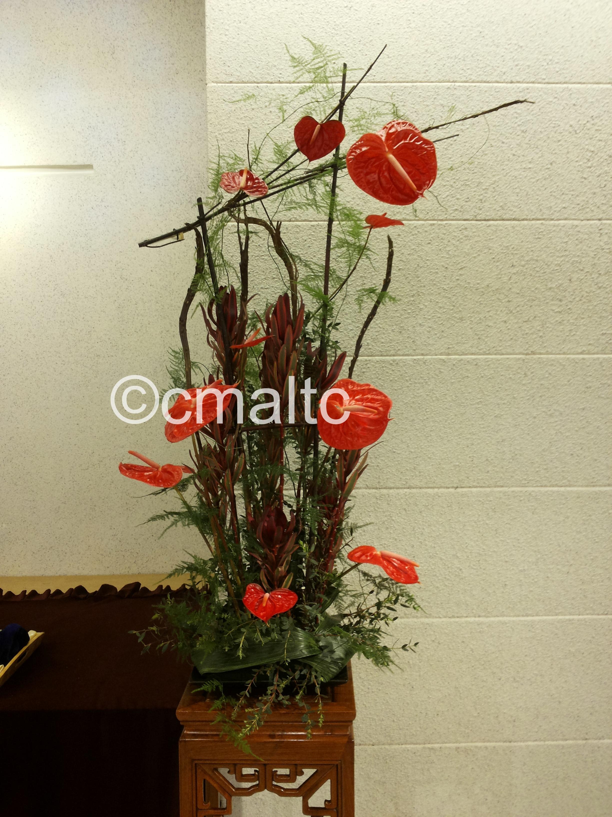 flower20160515