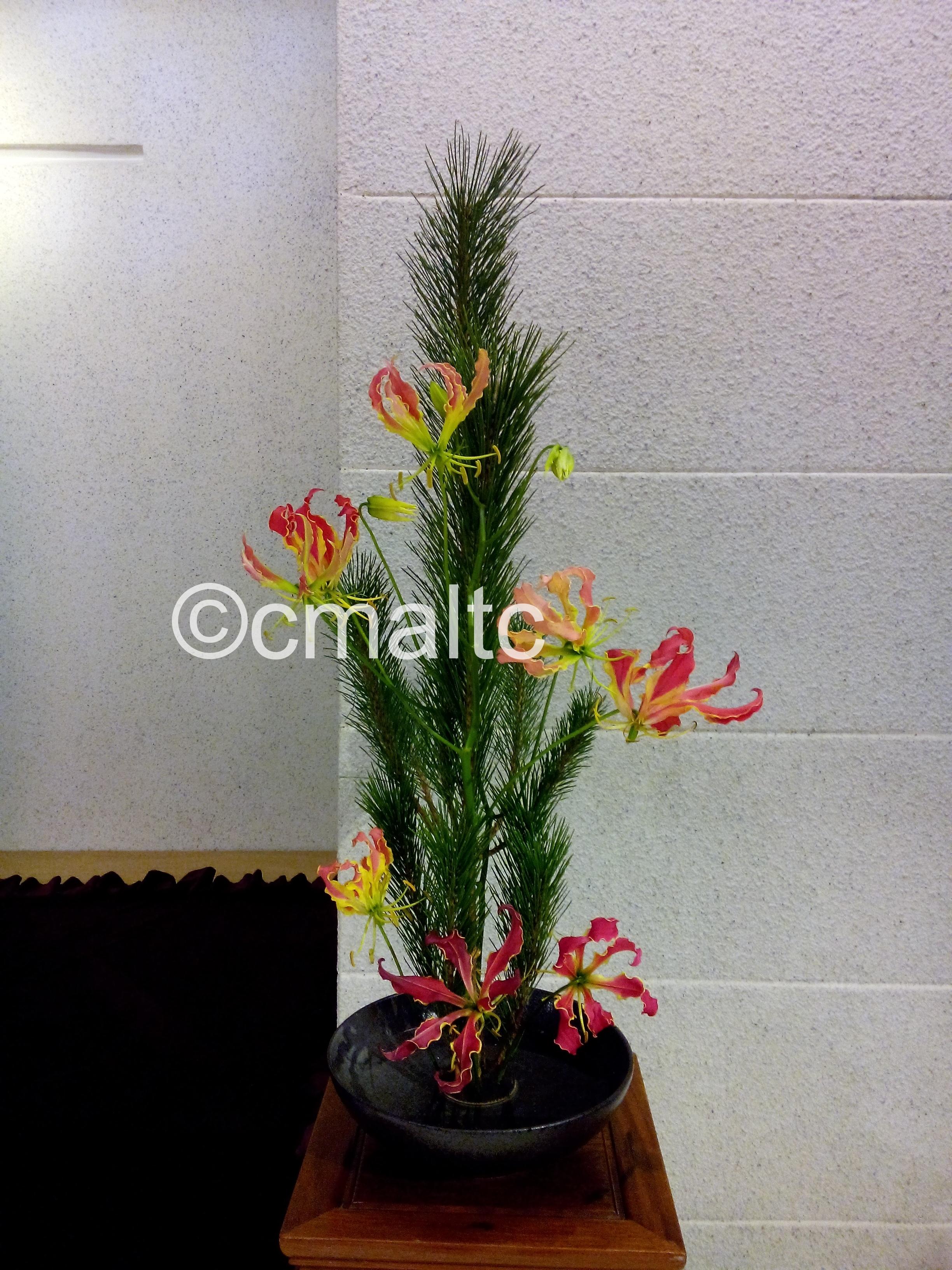 flower20161030