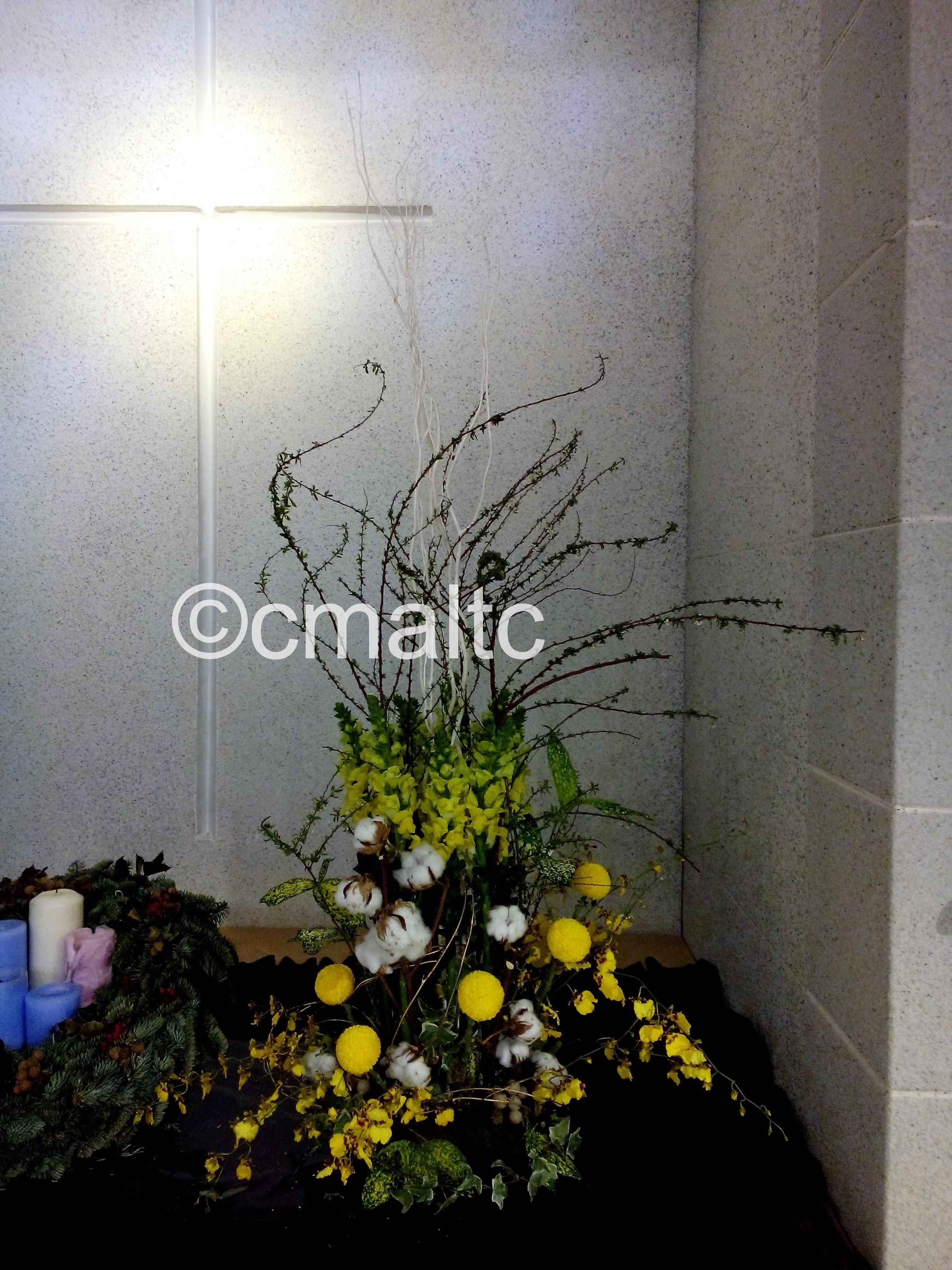 flower20161225