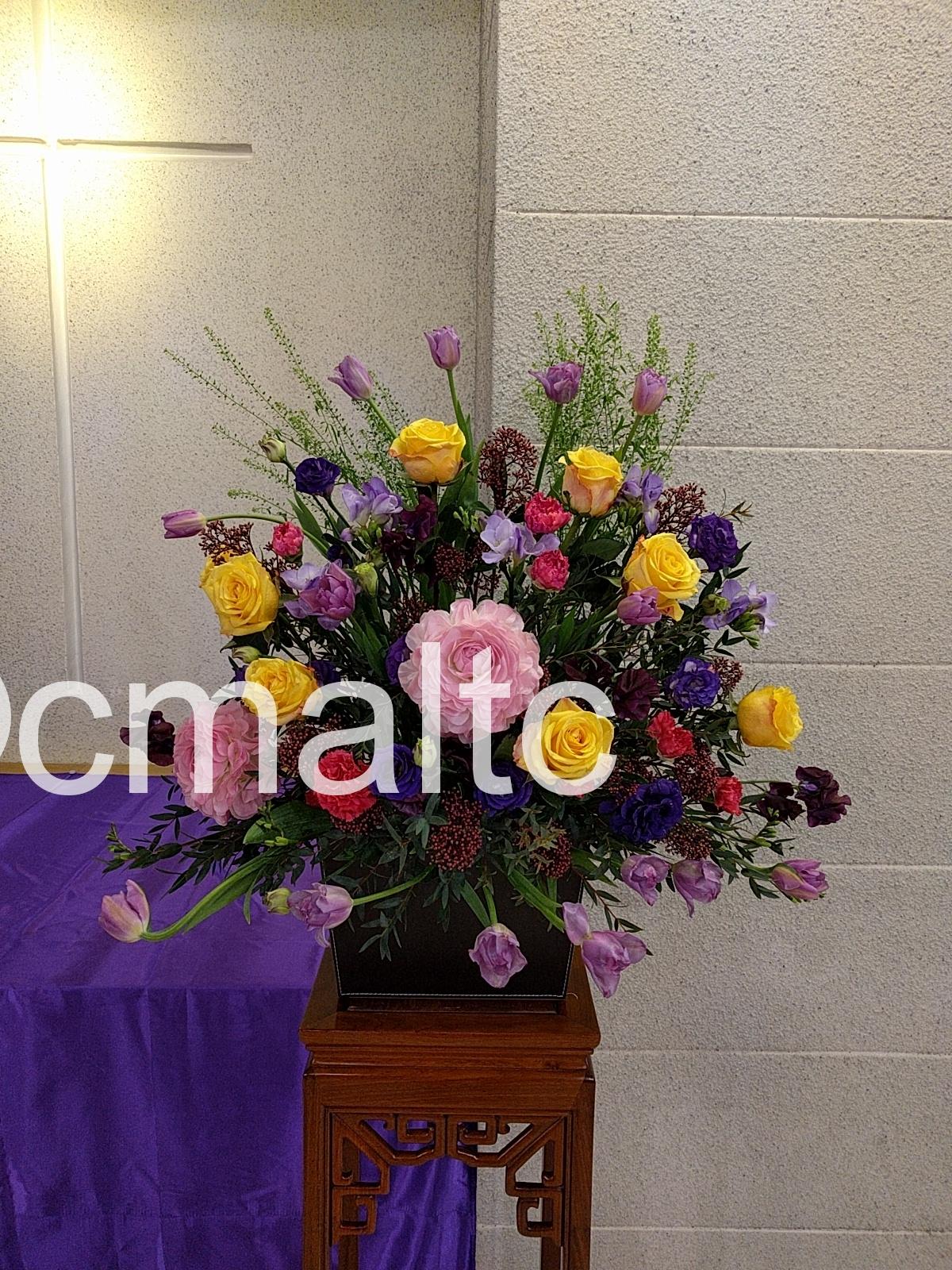flower20180225