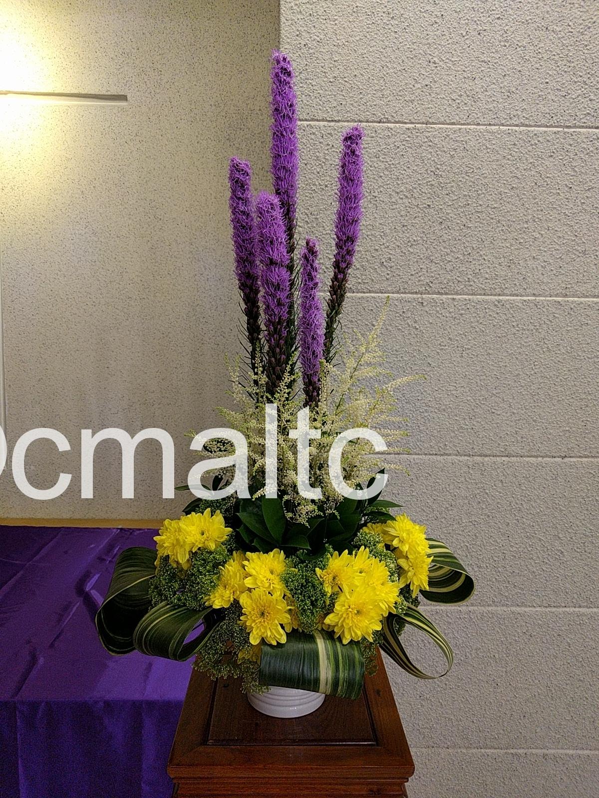 flower20180304