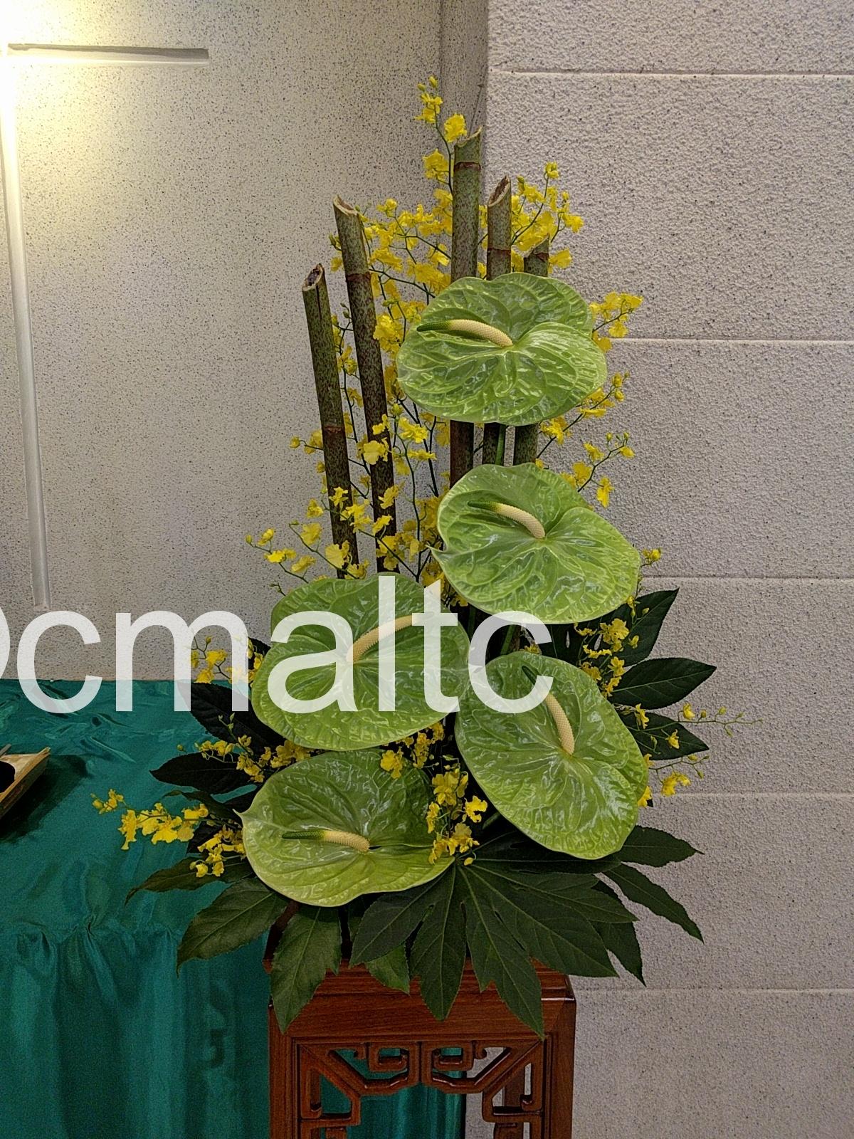 flower20180603