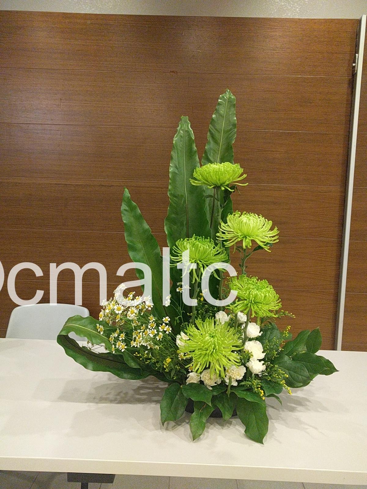 flower20180826