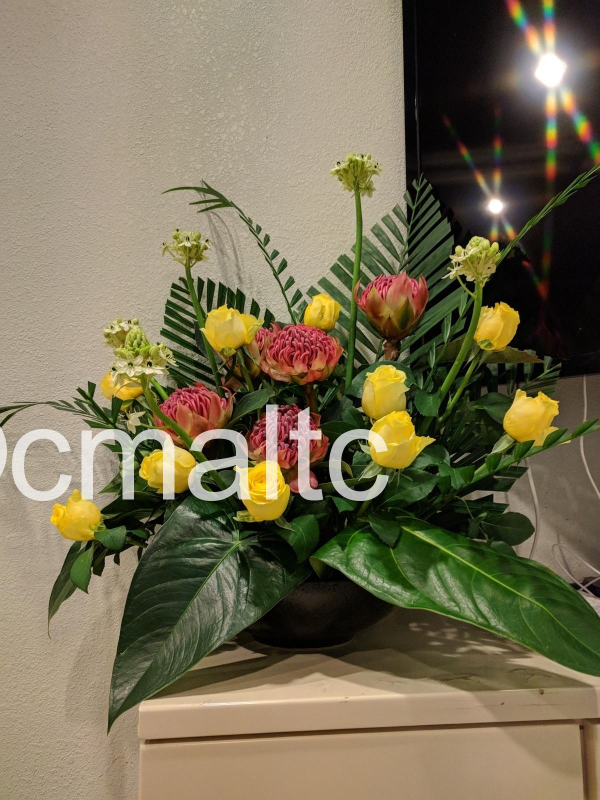 flower20180909