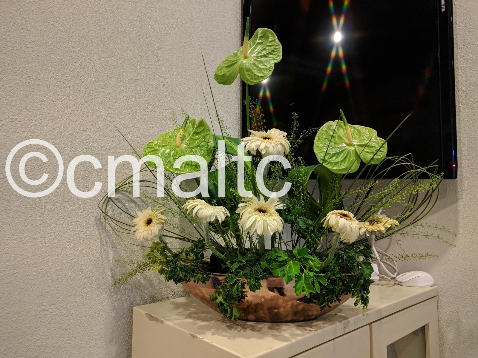 flower20180916