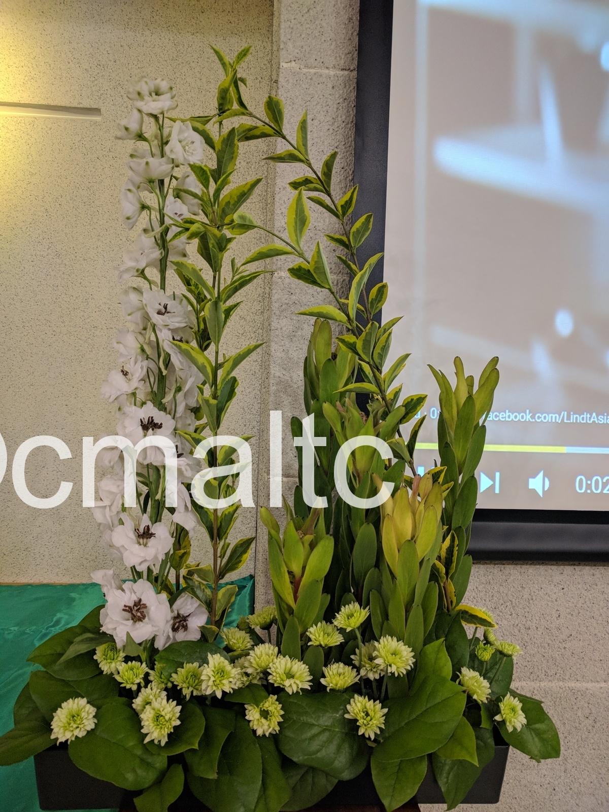 flower20181007