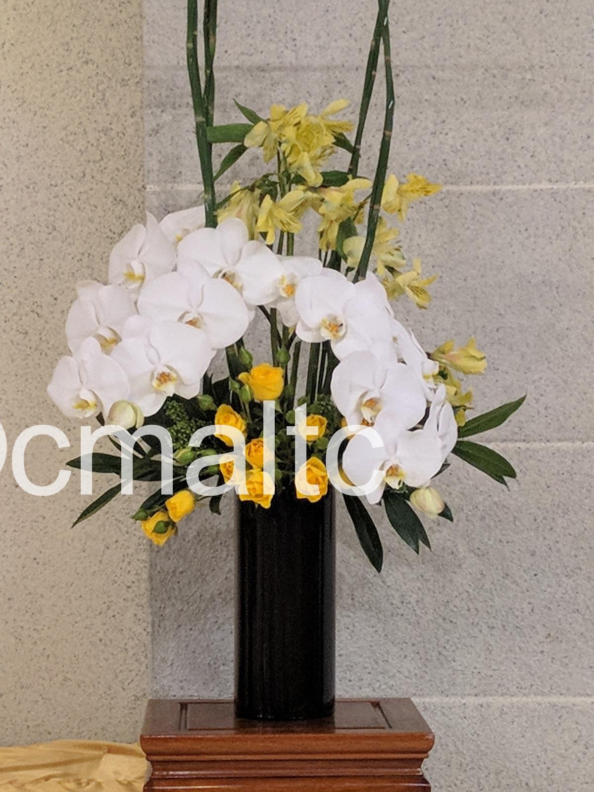 flower20181125