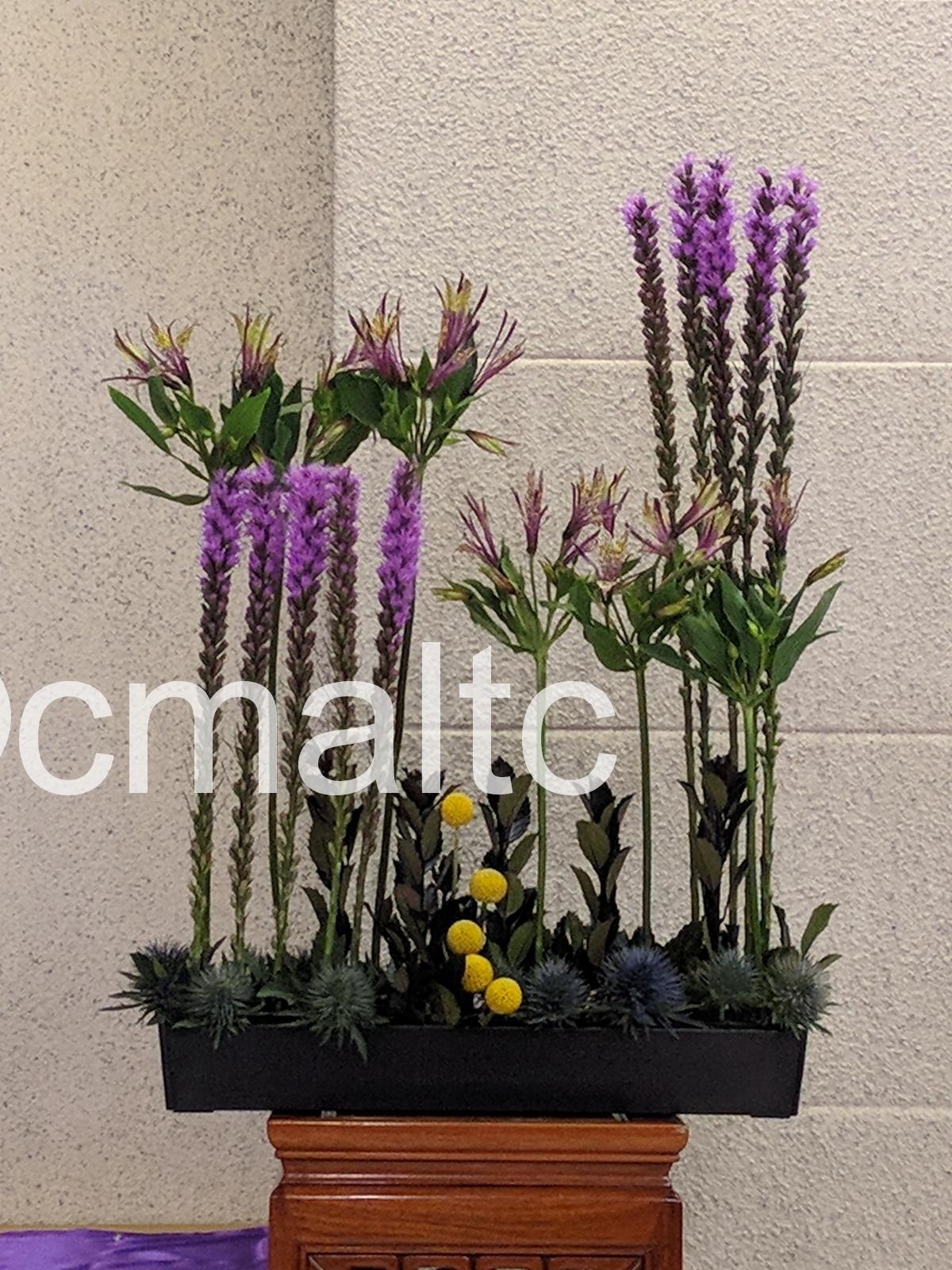flower20181202