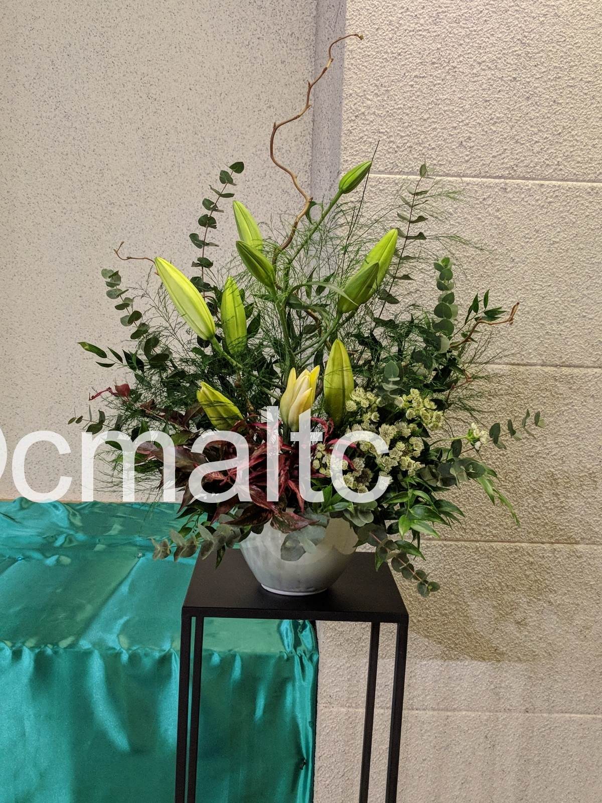 flower20190217