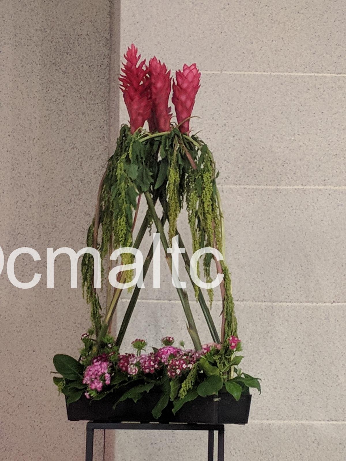 flower20190609