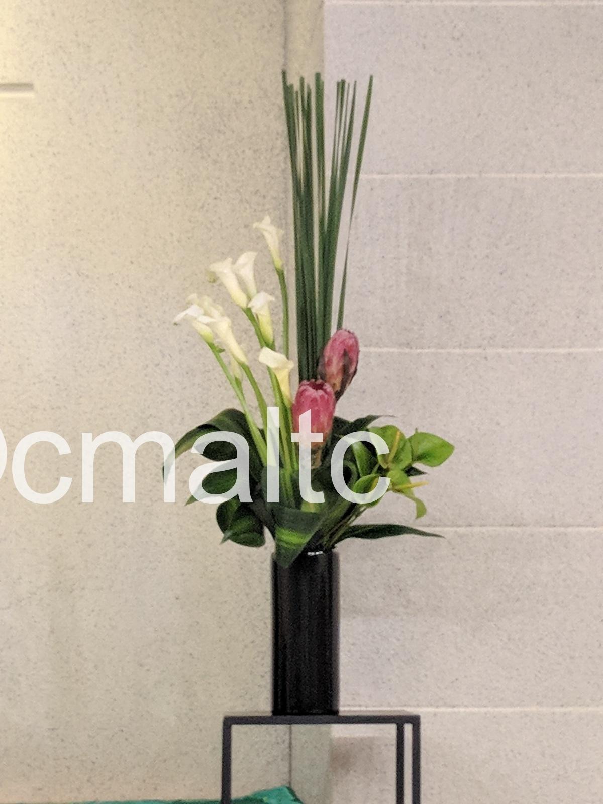 flower20190630