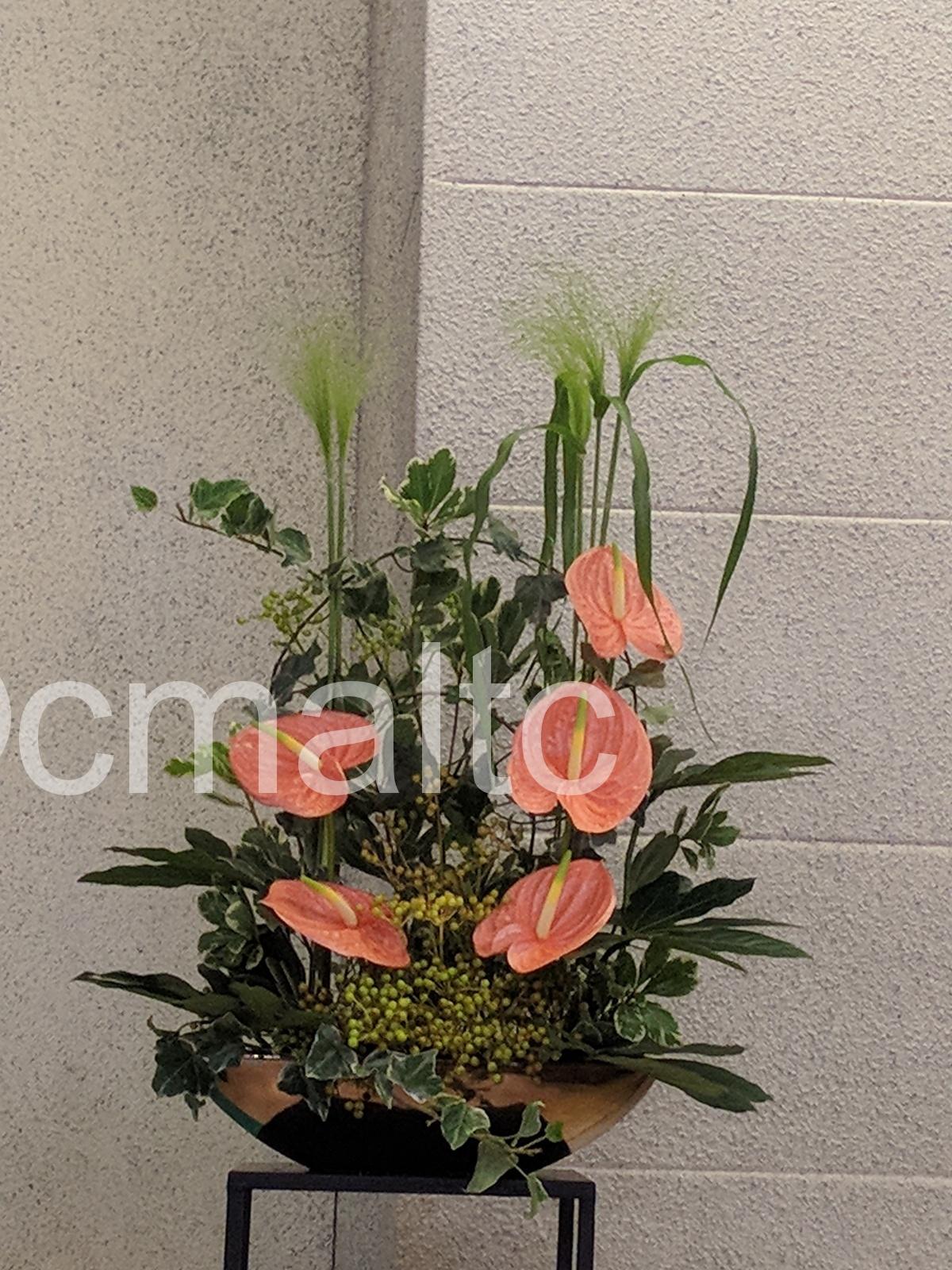 flower20190714