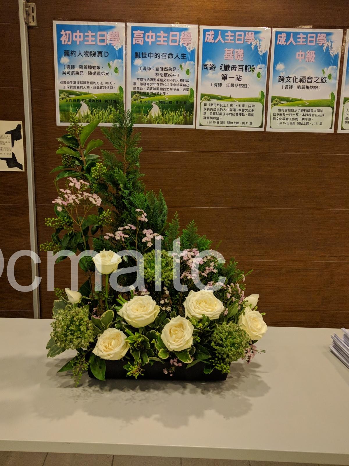 flower20190901