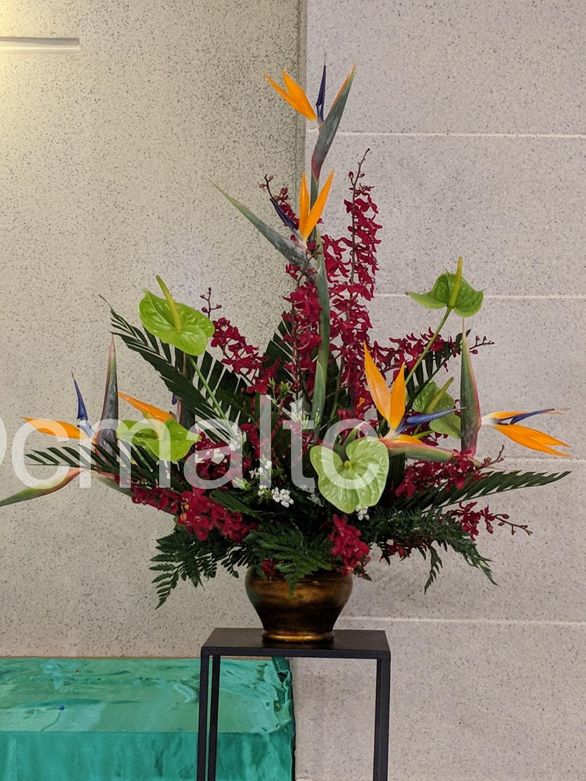 flower20210620