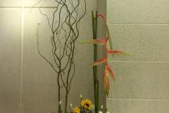 flower20160626