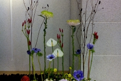 flower20161009