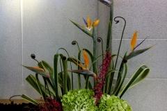 flower20161023