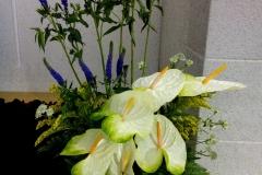 flower20170521