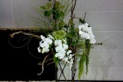 flower20170625