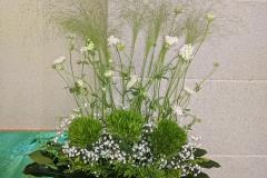flower20200628
